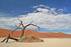Ciske-Namibië-1-op-maat